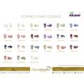 ZOLIDUO coating chart